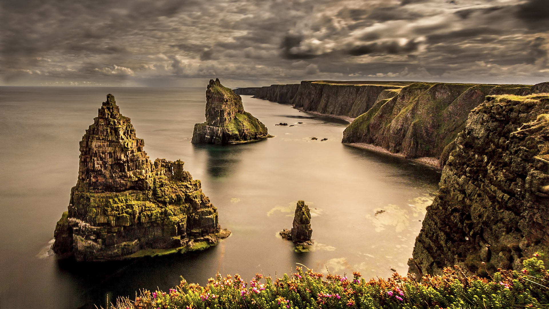 Rock Rose Gin is crafted in the stunning area of Caithness, Scotland